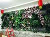 供应陕西西安及周边酒店KTV仿真绿植墙定制