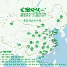 上海尤宠快线宠物托运全国连锁的宠物托运公司