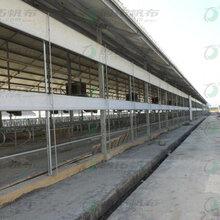 湖南养殖场卷帘防水防寒防晒耐用猪场卷帘图片