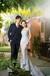 台州路桥婚纱摄影价格