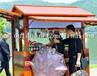 供应河北邯郸火车站实木售货屋木质小卖部移动小吃车