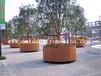供应惠州景区休闲场所木质景观花箱花盆实木花架隔离花车