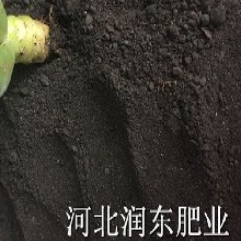 水产养殖z换用有机肥精选配制营养全面