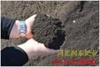 中草药种植专用有机肥发酵有机肥干鸡粪猪粪牛粪羊粪追肥底肥厂家直销大量现货