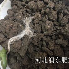 水稻种植专用有机肥发酵有机肥颗粒有机肥鸡粪牛粪猪粪羊粪厂家直销