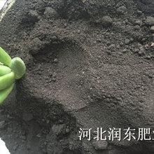 白芨种植专用有机肥发酵有机肥鸡粪牛粪猪粪羊粪颗粒有机肥