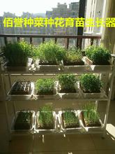 果蔬育苗生长器图片