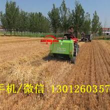 全自动小麦秸秆打捆机多少钱圆捆秸秆打捆机工作效率图片