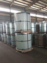 上海寶鋼鍍鋁鋅鎂彩涂板、寶鋼鋅鋁鎂彩鋼卷、寶鋼鍍鋅鋁鎂代理商圖片