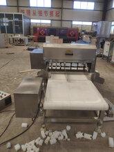 诚达大型冻刀鱼切段机设备生产带鱼切段机机器图片