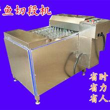 冻带鱼段切段机生产刀鱼切段机图片