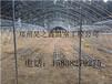 驻马店周口漯河温室大棚建造因注意的问题-郑州昊之鑫温室大棚公司