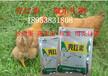 北京雞飼料添加劑解決薄蛋殼哪家專業