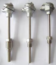 普通防水式一体化温度变送器图片