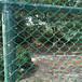 生产销售高速公路护栏勾花网矿用镀锌勾花网圈地勾花网
