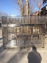 供应不锈钢狗笼子