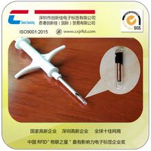 奶牛电子芯片标记奶牛植入式电子标签,畜牧业防伪溯源标签