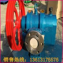 不锈钢罗茨泵,LC-18/0.6不锈钢罗茨泵,耐腐蚀罗茨泵