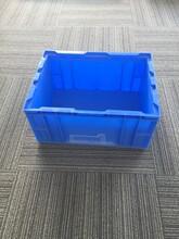 厂家热销耐用蓝色塑料HP-4C周转箱,外435-325-210HP周转箱批发