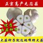 河北瑞峰无芯大蒜良种-增产、抗重茬、抗病害、耐寒、无蒜芯图片