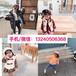 上海韓國童裝批發市場2019新款韓版風格童裝棉衣貨到付款新款兒童羽絨棉服韓版童裝批發