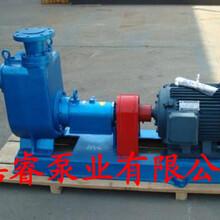 供应成都柴油泵船舶专用泵自吸式离心泵80CYZ-32图片