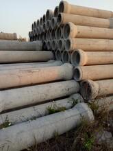 廣州番禺Φ3002000水泥管鋼筋混凝土管開挖管圖片