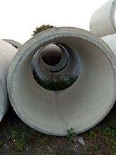 供应广州番禺水泥管厂家Φ2000企口管.排水管,水泥管图片