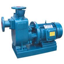 直聯化工自吸泵ZXL型沈陽頂盛專業制造,價格低,型號全,性能穩定圖片