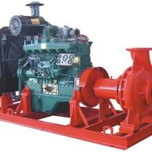 柴油機消防泵圖片