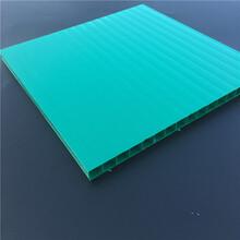 高强度8mm双层阳光板,佛山pc阳光板厂家图片