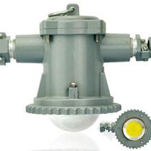 冷氏电气全新DGS20/127L(A)矿用隔爆型LED巷道灯