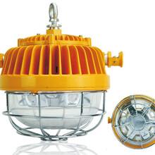 冷氏电气DGS45/127L(A)矿用隔爆型LED巷道灯