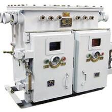QJZ-2X60SF双电源真空电磁起动器
