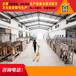 上海崇明國標車用尿素溶液生產設備價格,品牌授權