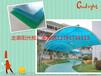 青岛阳光板厂家在哪里青岛阳光板价格