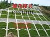 源茂供应各种护坡模具A-1高速护坡模具一件起批