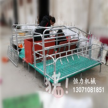 新型全复合母猪产床厂家直销养猪设备双体母猪产床多少钱