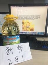 新疆新粮粮油交易中心招商代理