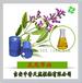 厂家直销纯正鼠尾草油99%促进细胞再生和血液循环