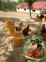 如何养蚯蚓喂土鸡;蚯蚓养土鸡技术;卓农禽业土鸡苗供应商图片