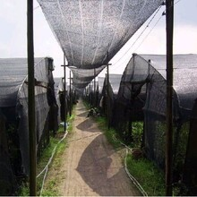 兰州遮阳网价格和甘肃室外遮阳网厂家