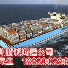 广州到上海能走海运吗?多少钱?