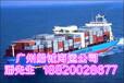 海运代理广西到临沂的海运公司海运代理运输