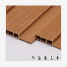 衢州石塑墙板6008厂家地址图片