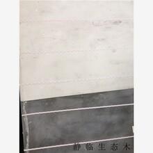 大足石塑墙板4007总经销图片