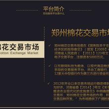 郑棉双创商品服务中心招商-模式简单
