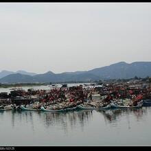双月湾在哪里,惠州市惠东县港口镇双月湾,大星山有海龟湾,预订酒店电话