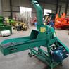 自動進料鍘草機價格大型飼草鍘草機青貯碎草機鏈條式秸稈鍘切機