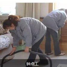 樂迎迎專業廣州高端家政,商務服務知名品牌圖片